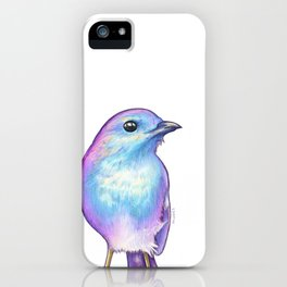 Rainbow Robin iPhone Case