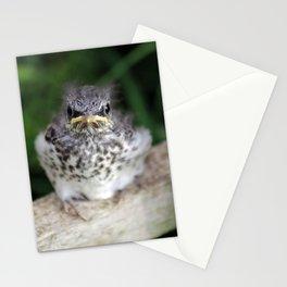 Empty Nest Stationery Cards