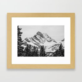 black and white like forest and snow Framed Art Print