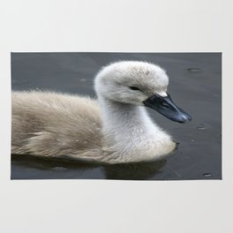 Not Such an Ugly Duckling Rug