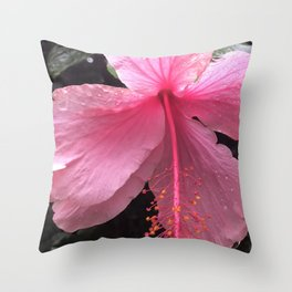 Dewdrops on Tropical Pink Flower Throw Pillow