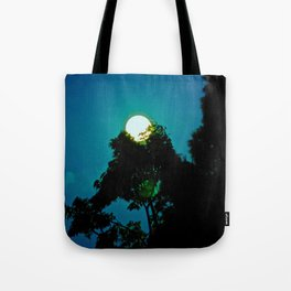 The Moon Fell From The Sky Tonight & A Tree Saved Her Tote Bag