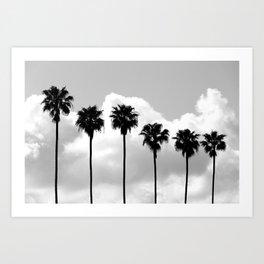 Tropical Darkroom #265 Art Print