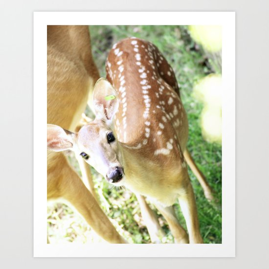 Spotted at the Zoo Art Print