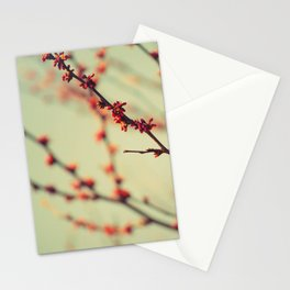 When spring was autumn... Stationery Cards