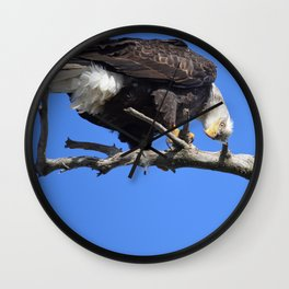 Alaskan Bald Eagle - Quizzical Wall Clock