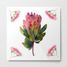 Protea Botanical Metal Print