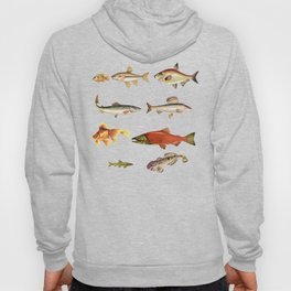 Fishing Line Hoody