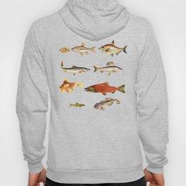 Fishing Line Hoody