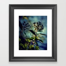 A change of pace Framed Art Print