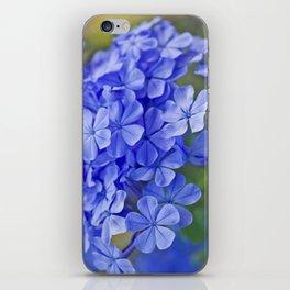 Summer garden blues - macro floral phtography iPhone Skin