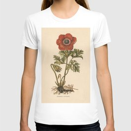 1800s Encyclopedia Lithograph of Anemone Flower T-shirt