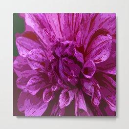 Hot Pink Dahlia Metal Print