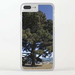 Citys Fall Clear iPhone Case