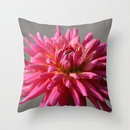 Colorful Dahlia Flower Bloom Throw Pillow