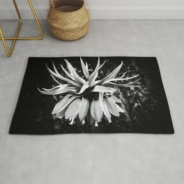 The Crown Rug