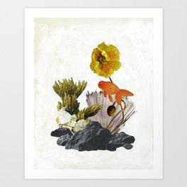 Ocean Poppy Art Print