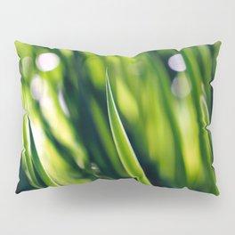 Green Pillow Sham