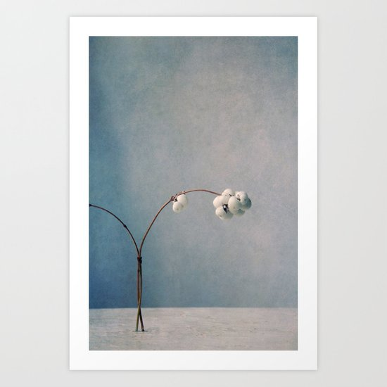 snowberries Art Print
