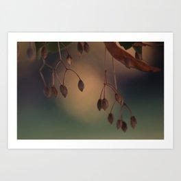 Autumn fantasies Art Print