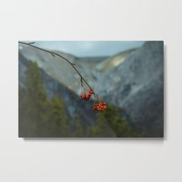 Mountain Berries Metal Print