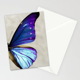 Morpho Stationery Cards