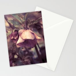 SPRING 'S COMING SOON vol.1 Stationery Cards