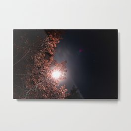 Moon and Star Lit Trees Metal Print