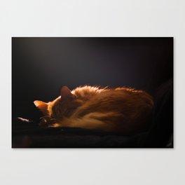 La plus belle photo du monde - Roucky Canvas Print