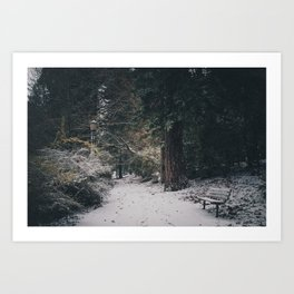 Late Autumn Snow Art Print