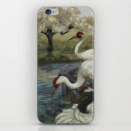 Cranes in Repose iPhone Skin