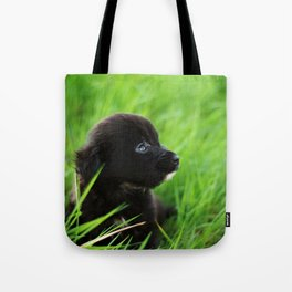Shelter Puppy Tote Bag
