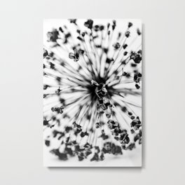 Spherical Metal Print