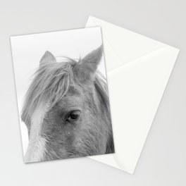 Eye Of The Horse Monochrome Stationery Cards