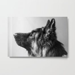 Pepe The Dog Metal Print