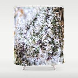 Platinum Purple Strain Genetics OG Kush x Purple Urkle Shower Curtain