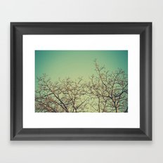 Arañazos Framed Art Print