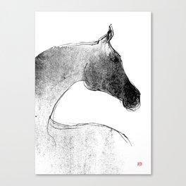 Horse (Mare) Canvas Print