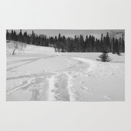 Winter 13 Rug