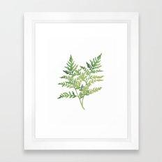 Plant 3 Framed Art Print