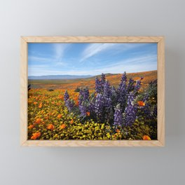 Poppy Field Superbloom Framed Mini Art Print