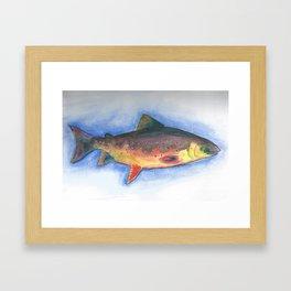 Fish 1 Framed Art Print