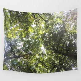 Looking up at the Trees Wall Tapestry