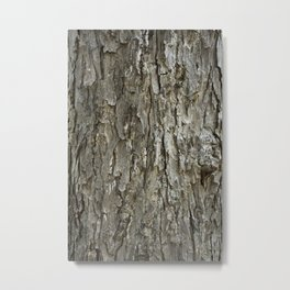 Tree Bark Texture Metal Print