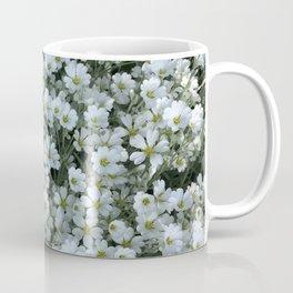 Snow In Summer - Cerastium Silver Carpet Flower Coffee Mug