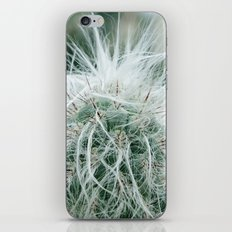 Cactus 06 iPhone & iPod Skin