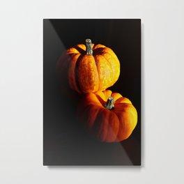 Fresh pumpkins Metal Print