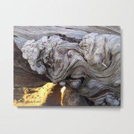 Driftwood Abstract Metal Print