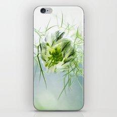 Nigella, Tarhaneidonkukka iPhone & iPod Skin