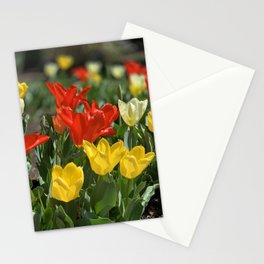 Lewes Tulips Festival Stationery Cards